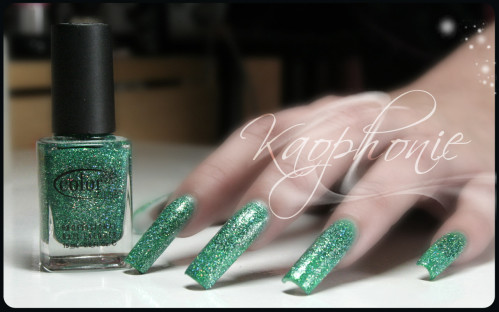CC-Holiday-splendor-005