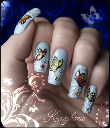 papillons-001