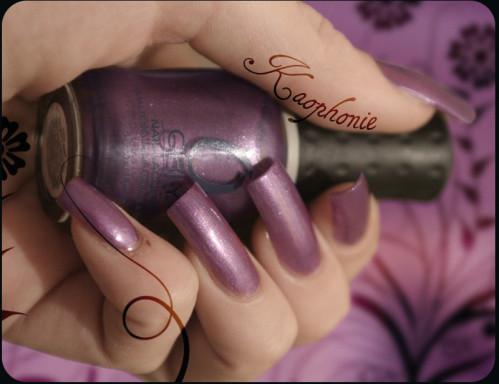 vanguard-violet-014