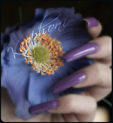 gothic-lolita-CC-009