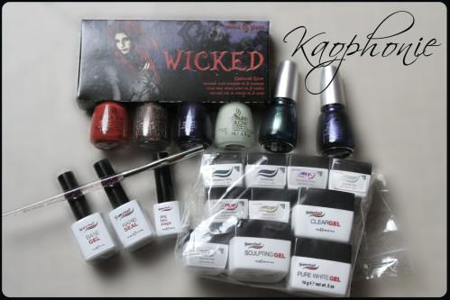 paquet-laugier-octobre-2012-001
